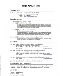 FYI Employee Background Screening  Employment Resume